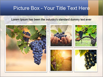 0000074940 PowerPoint Template - Slide 19