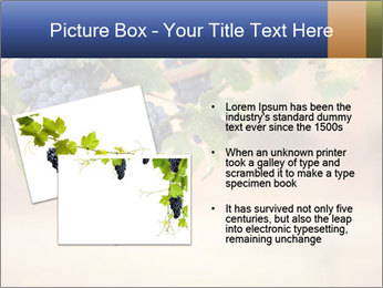0000074940 PowerPoint Template - Slide 20