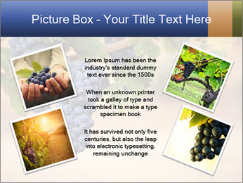 0000074940 PowerPoint Template - Slide 24