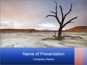 0000074941 PowerPoint Templates