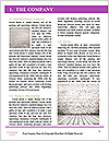 0000074943 Word Template - Page 3