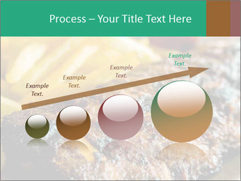 0000074948 PowerPoint Template - Slide 87