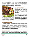 0000074948 Word Templates - Page 4