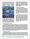 0000074963 Word Templates - Page 4