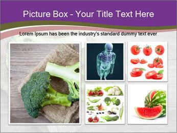 0000074964 PowerPoint Templates - Slide 19