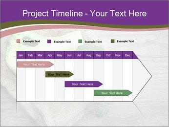 0000074964 PowerPoint Templates - Slide 25