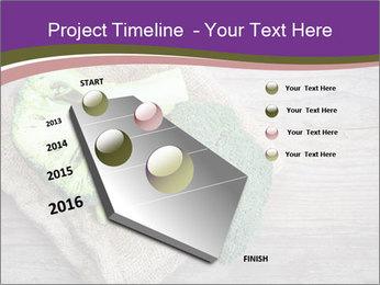 0000074964 PowerPoint Templates - Slide 26