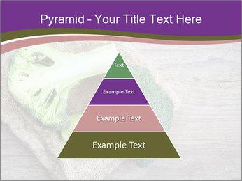 0000074964 PowerPoint Templates - Slide 30