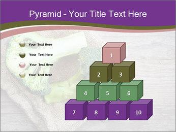 0000074964 PowerPoint Templates - Slide 31