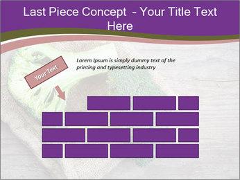 0000074964 PowerPoint Templates - Slide 46
