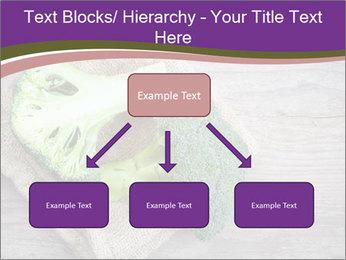 0000074964 PowerPoint Templates - Slide 69
