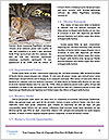 0000074968 Word Templates - Page 4