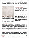 0000074970 Word Templates - Page 4