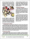 0000074976 Word Template - Page 4