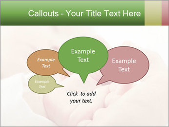 0000074983 PowerPoint Template - Slide 73