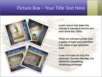 0000074986 PowerPoint Template - Slide 23