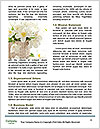 0000074987 Word Templates - Page 4