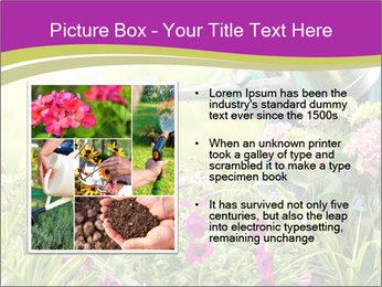 0000074988 PowerPoint Template - Slide 13