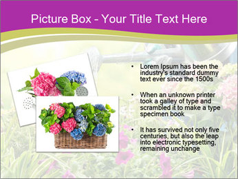 0000074988 PowerPoint Template - Slide 20