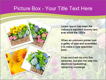 0000074988 PowerPoint Template - Slide 23