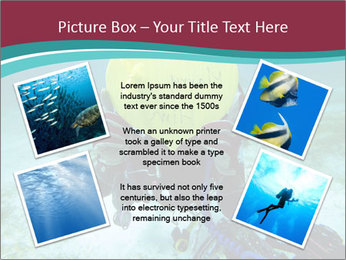 0000074993 PowerPoint Template - Slide 24