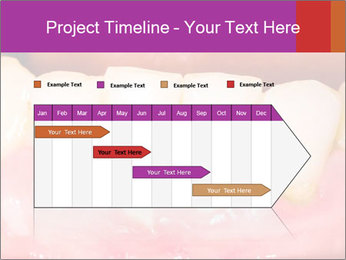 0000074994 PowerPoint Template - Slide 25