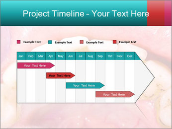 0000074995 PowerPoint Template - Slide 25