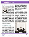 0000075007 Word Template - Page 3