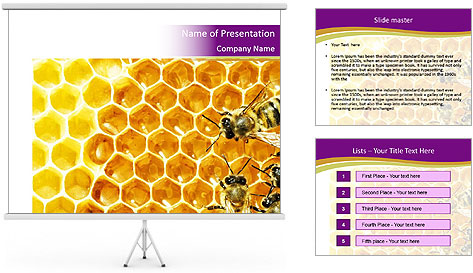 0000075024 PowerPoint Template