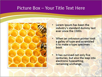 0000075024 PowerPoint Template - Slide 13