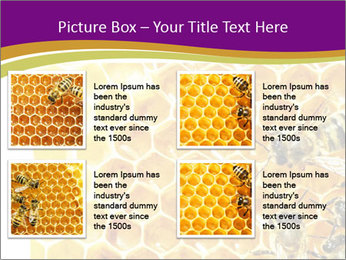 0000075024 PowerPoint Template - Slide 14