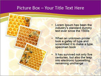 0000075024 PowerPoint Template - Slide 17