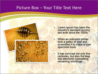 0000075024 PowerPoint Template - Slide 20