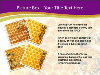 0000075024 PowerPoint Template - Slide 23