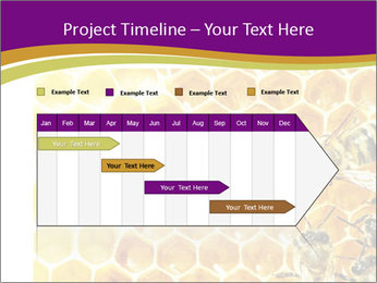 0000075024 PowerPoint Template - Slide 25