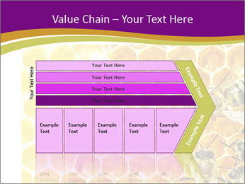 0000075024 PowerPoint Template - Slide 27