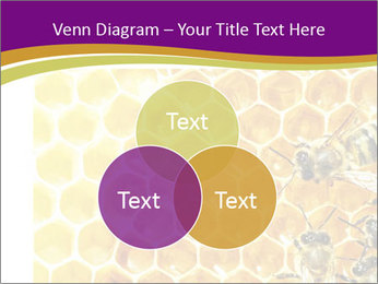 0000075024 PowerPoint Template - Slide 33