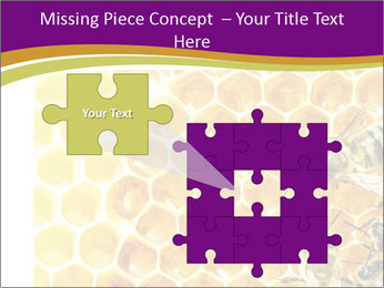 0000075024 PowerPoint Template - Slide 45