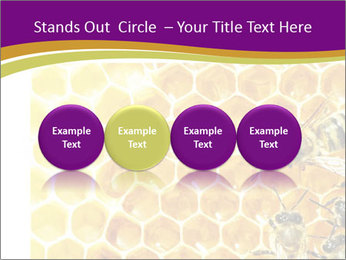 0000075024 PowerPoint Template - Slide 76