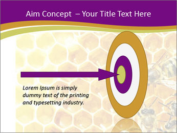 0000075024 PowerPoint Template - Slide 83