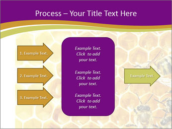 0000075024 PowerPoint Template - Slide 85
