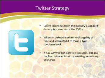 0000075024 PowerPoint Template - Slide 9