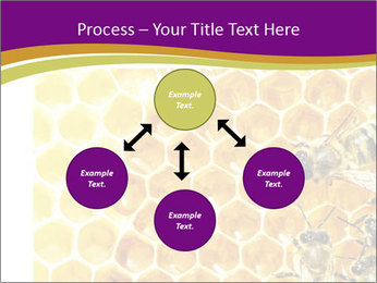 0000075024 PowerPoint Template - Slide 91