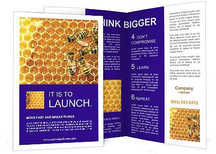 0000075025 Brochure Templates