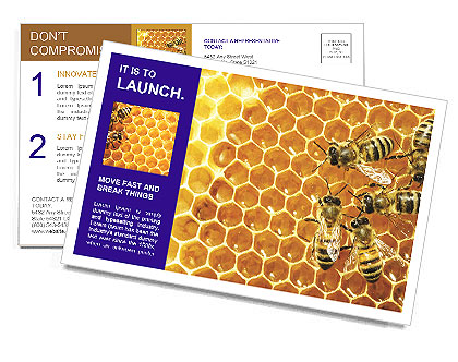0000075025 Postcard Template
