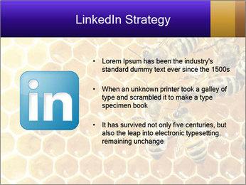 0000075025 PowerPoint Templates - Slide 12