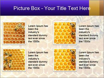 0000075025 PowerPoint Templates - Slide 14
