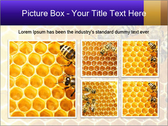 0000075025 PowerPoint Template - Slide 19