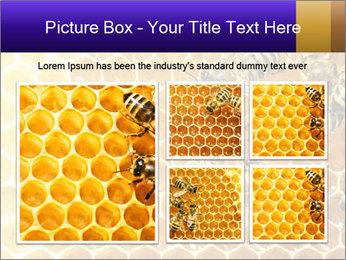 0000075025 PowerPoint Templates - Slide 19