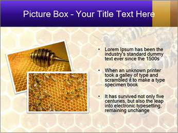0000075025 PowerPoint Templates - Slide 20